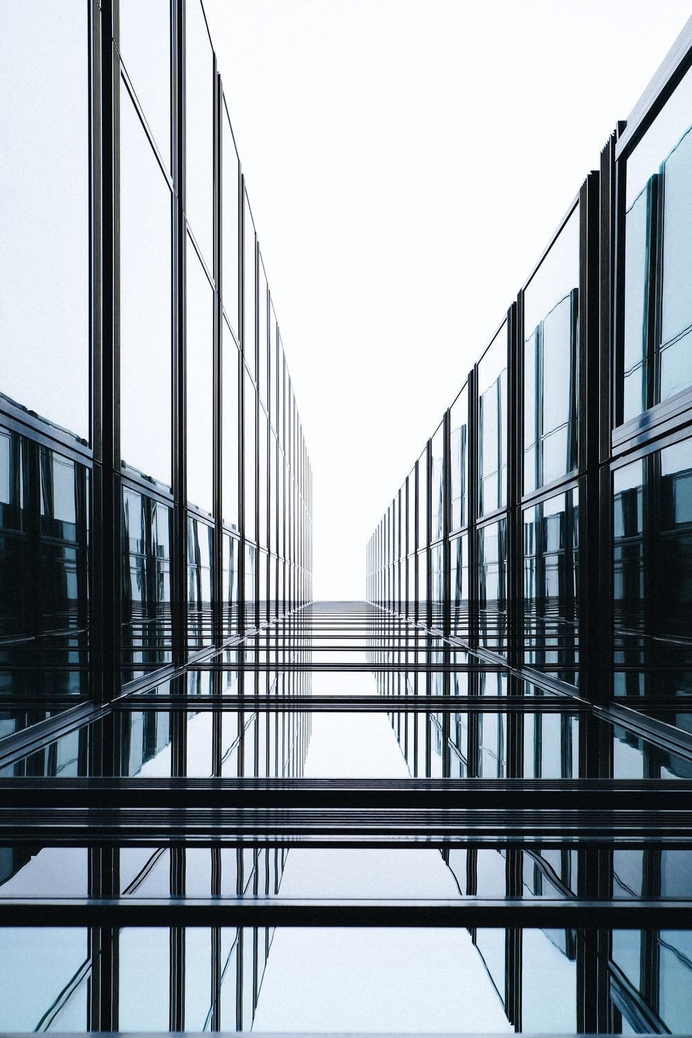 glass wall during daytime