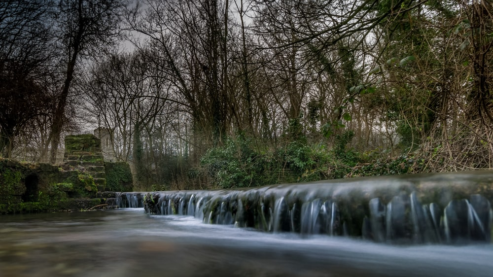time-lapse photography of river beside trees during daytime