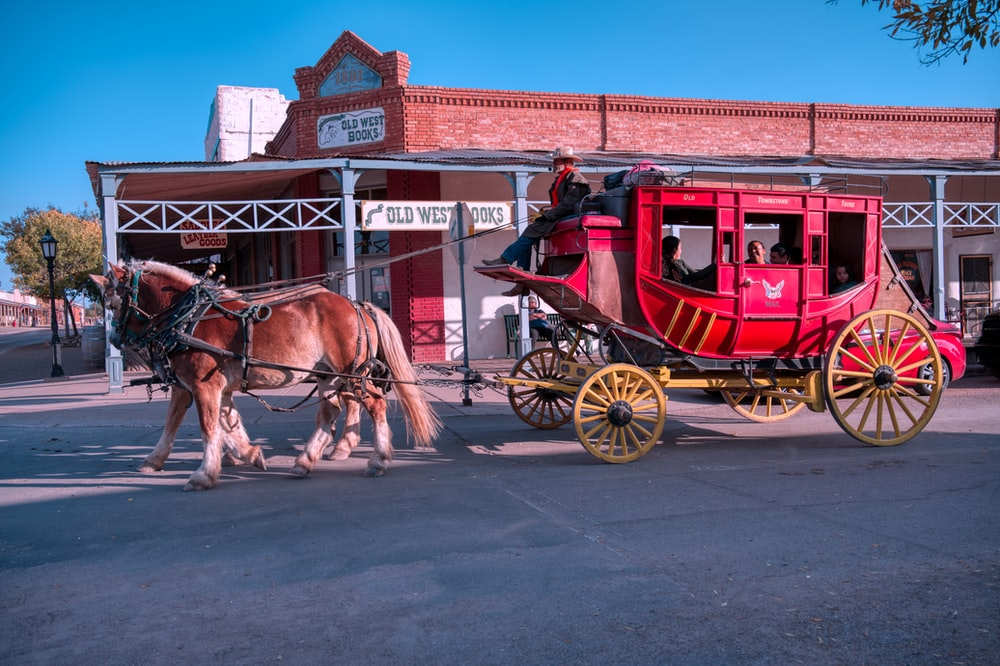pink carriage with brown horse