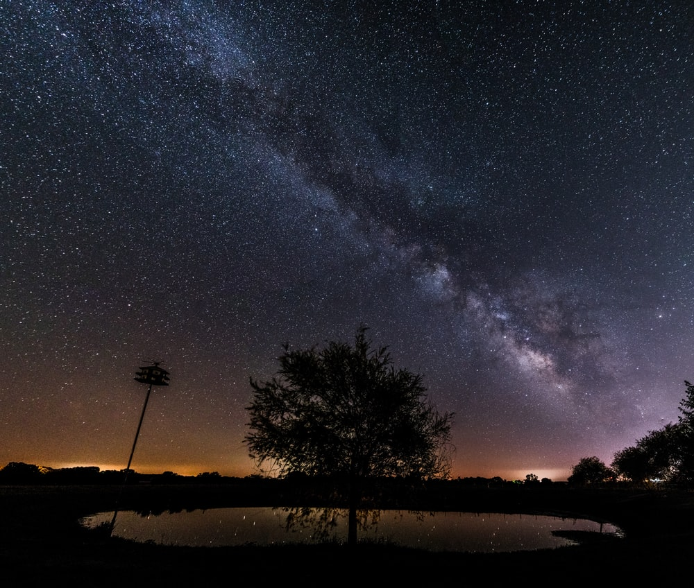 silhouette of trees under milky way during night