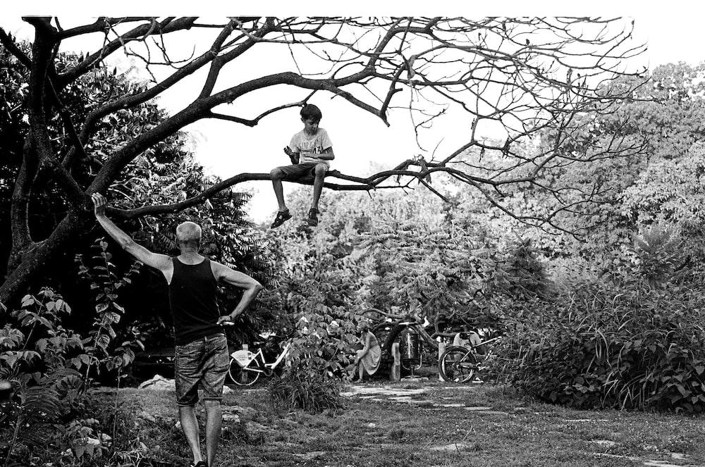 boy sitting on bare tree branch near standing man