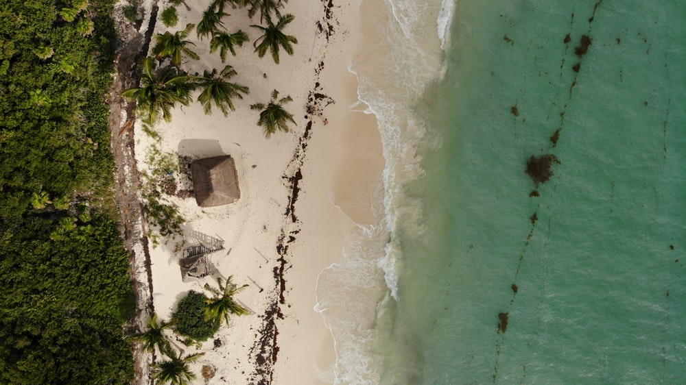 aerial photo of the beach during daytime