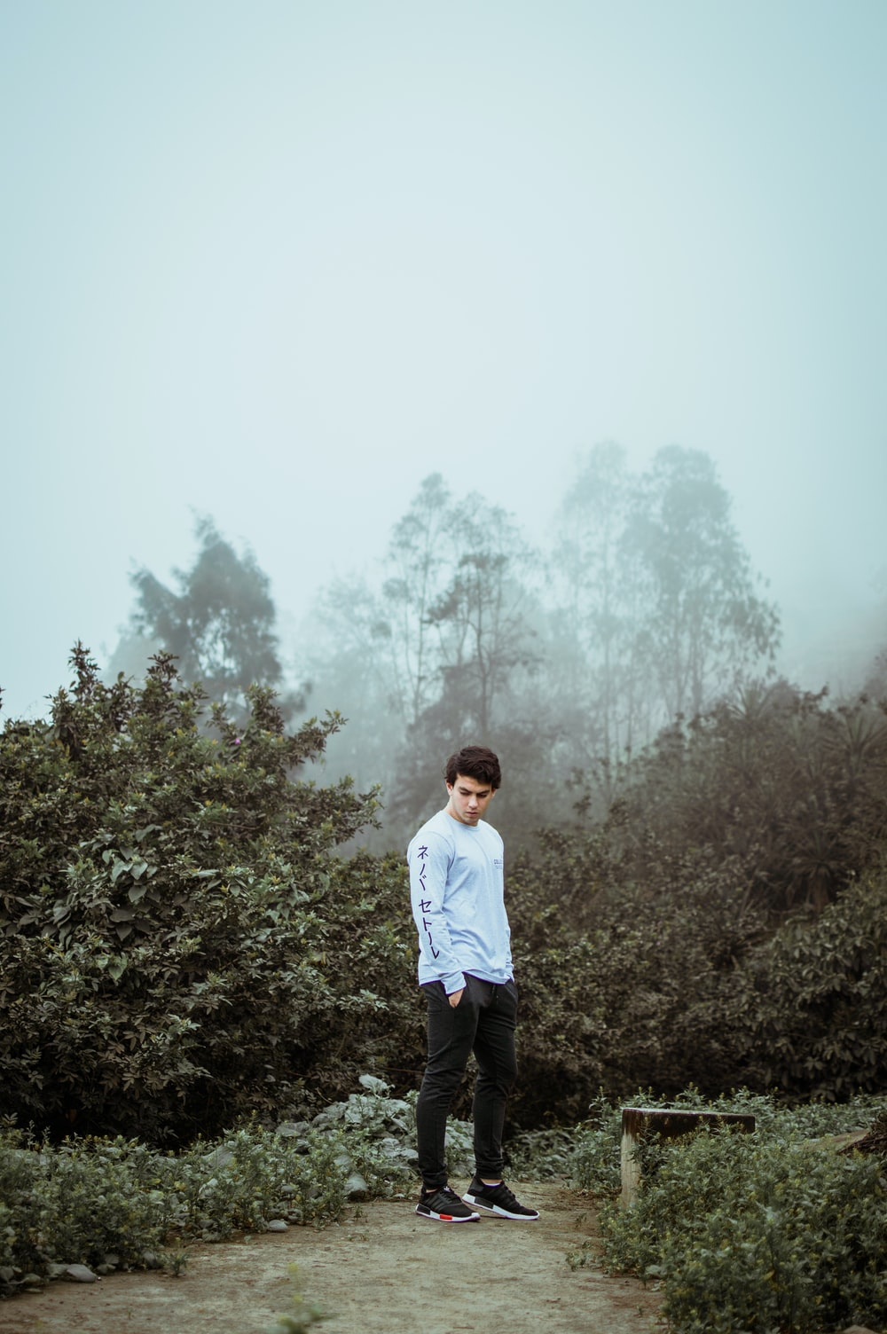 man in white long sleeves shirt standing at the garden with fogs overhead