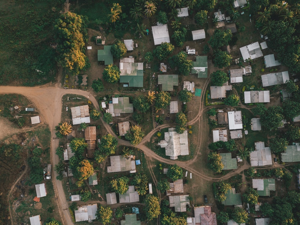 aerial photography of houses and trees