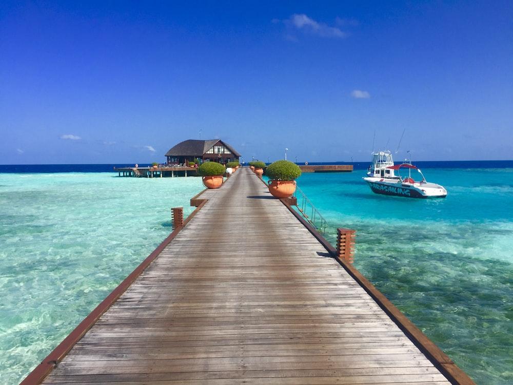 brown wooden dock beside white motor boat