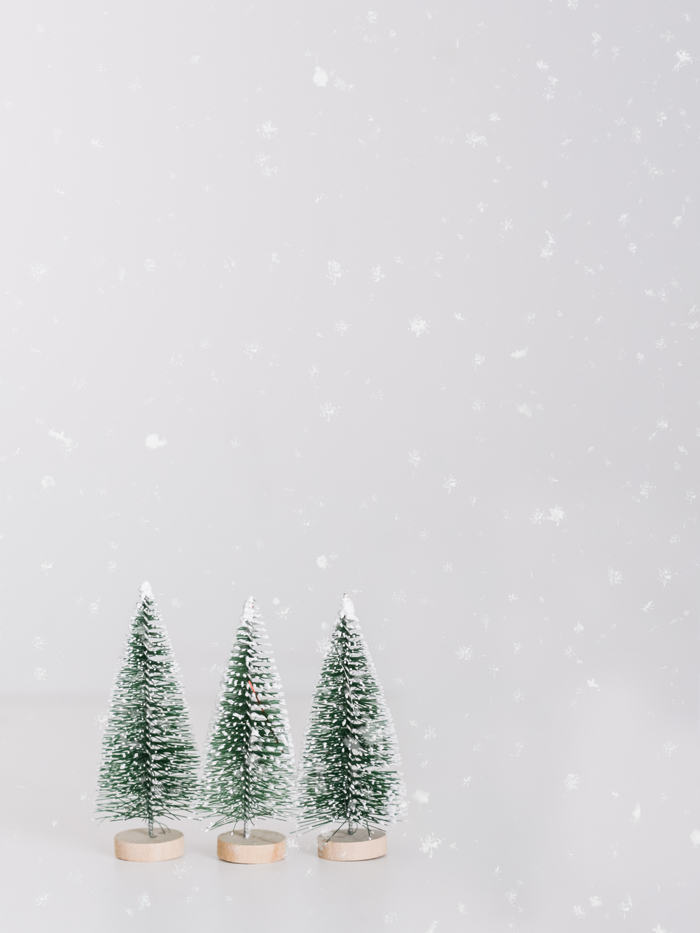 green pine trees under snowy weather