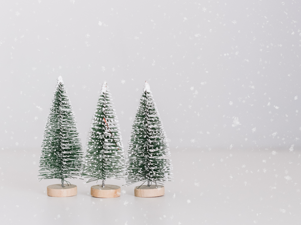 several miniature green-and-white pine tree table decors