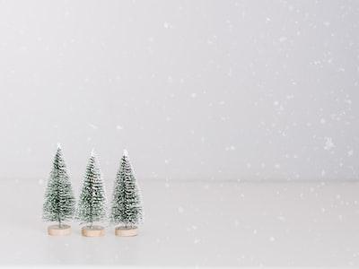 three green chrismas trees christmas eve zoom background