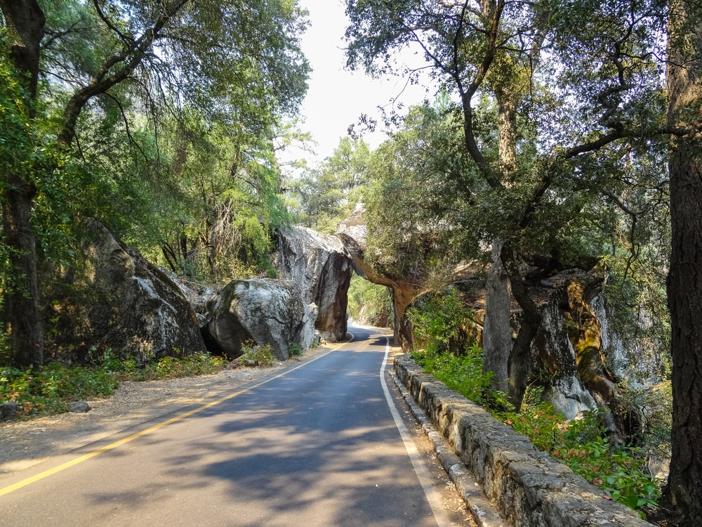 grey road pass under a stone cave with green trees landscape photography