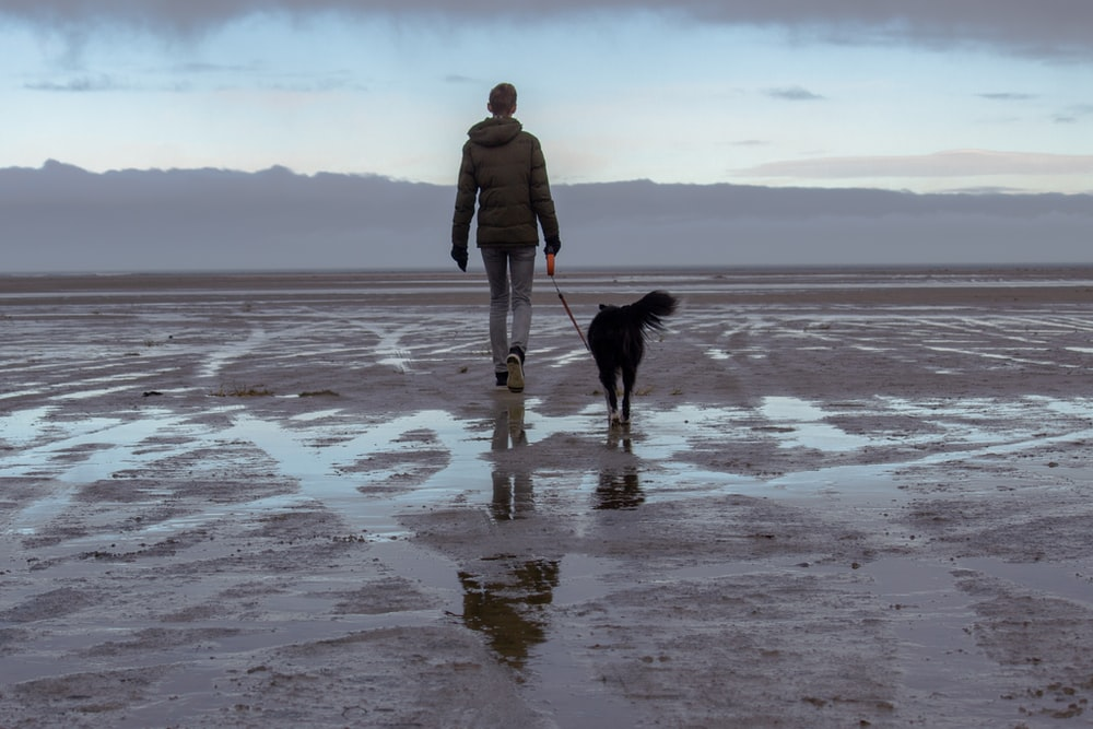 person walking on sand with dog