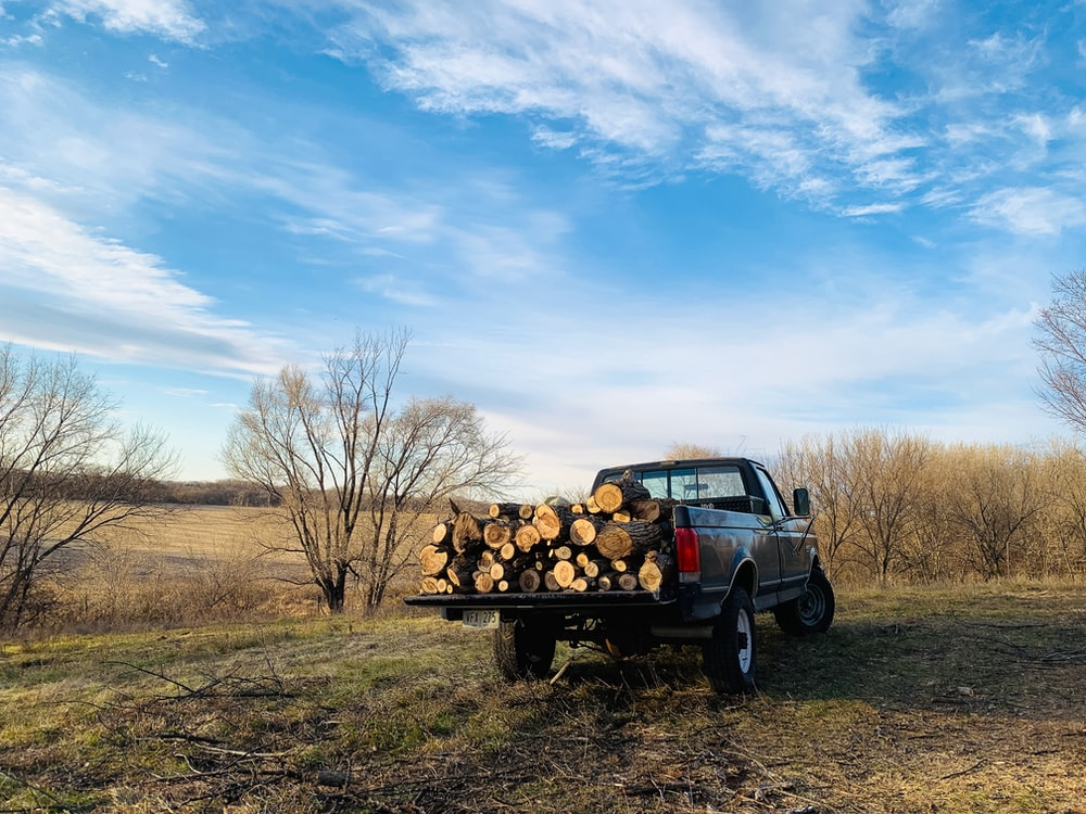 black single cab pickup truck with brown wood logs