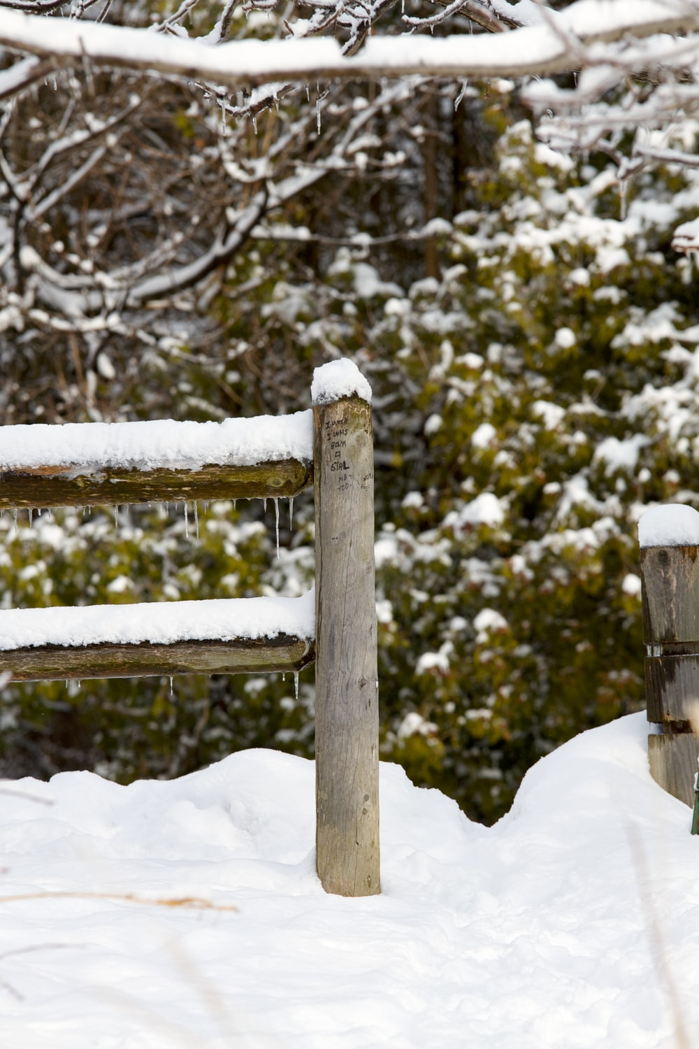 snow covered brown fence