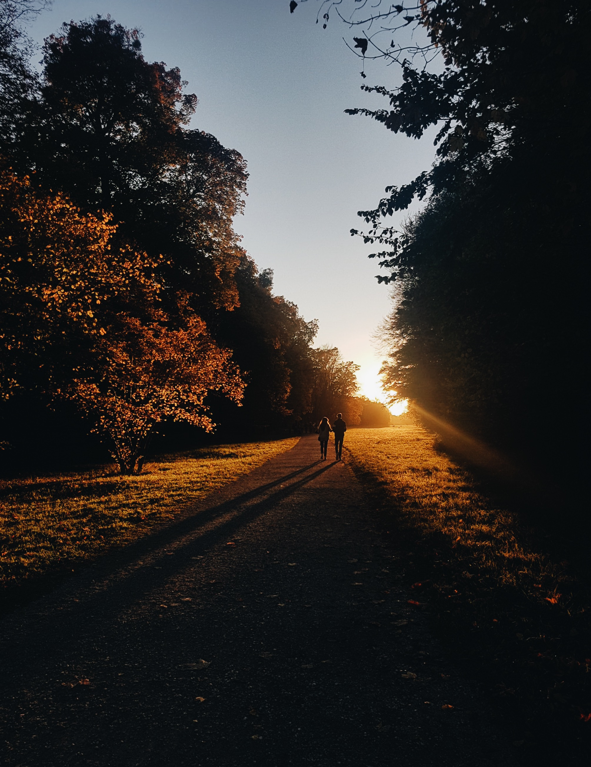 couple walking on road surrounded by trees during sunset