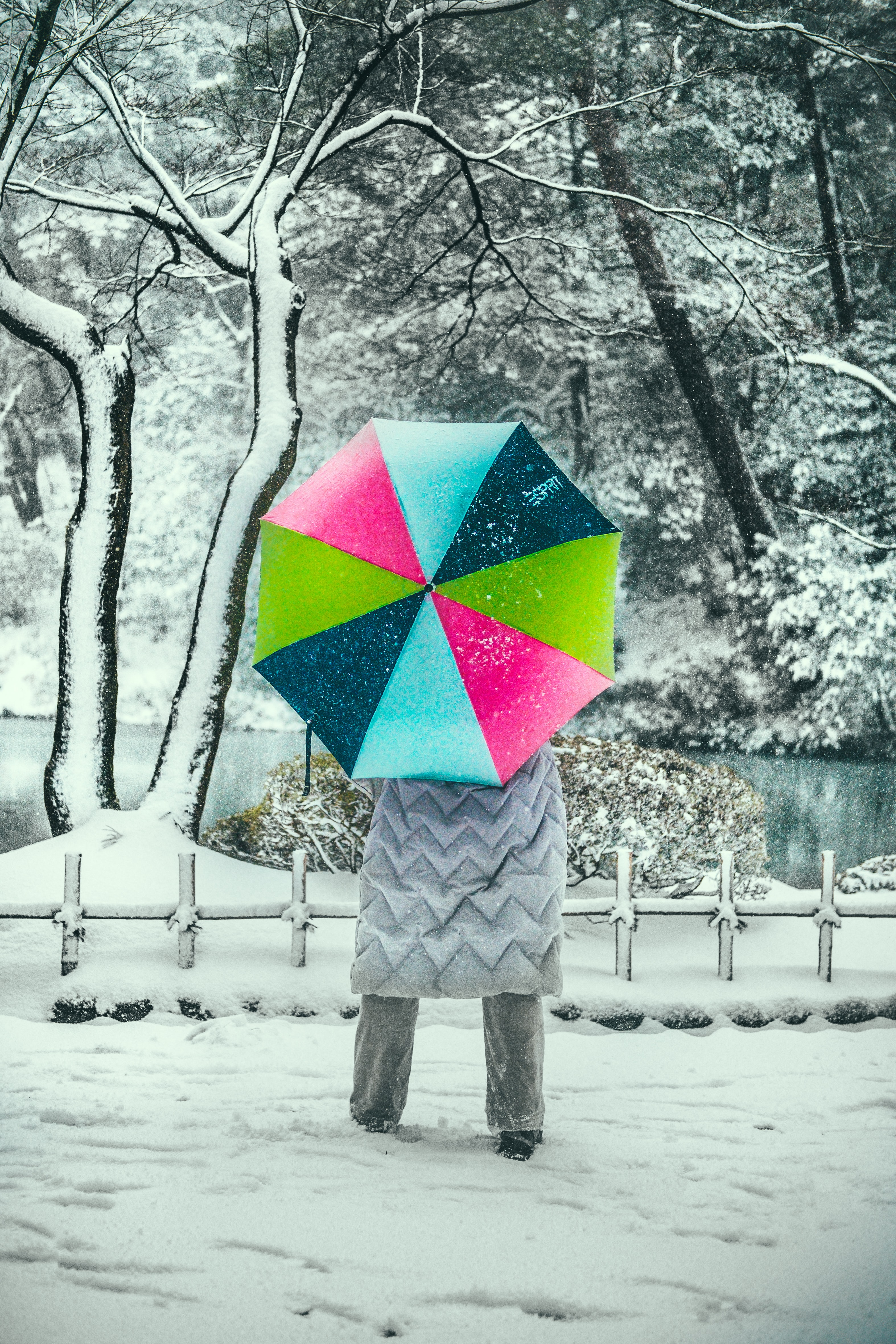 selective focus photography of person holding umbrella
