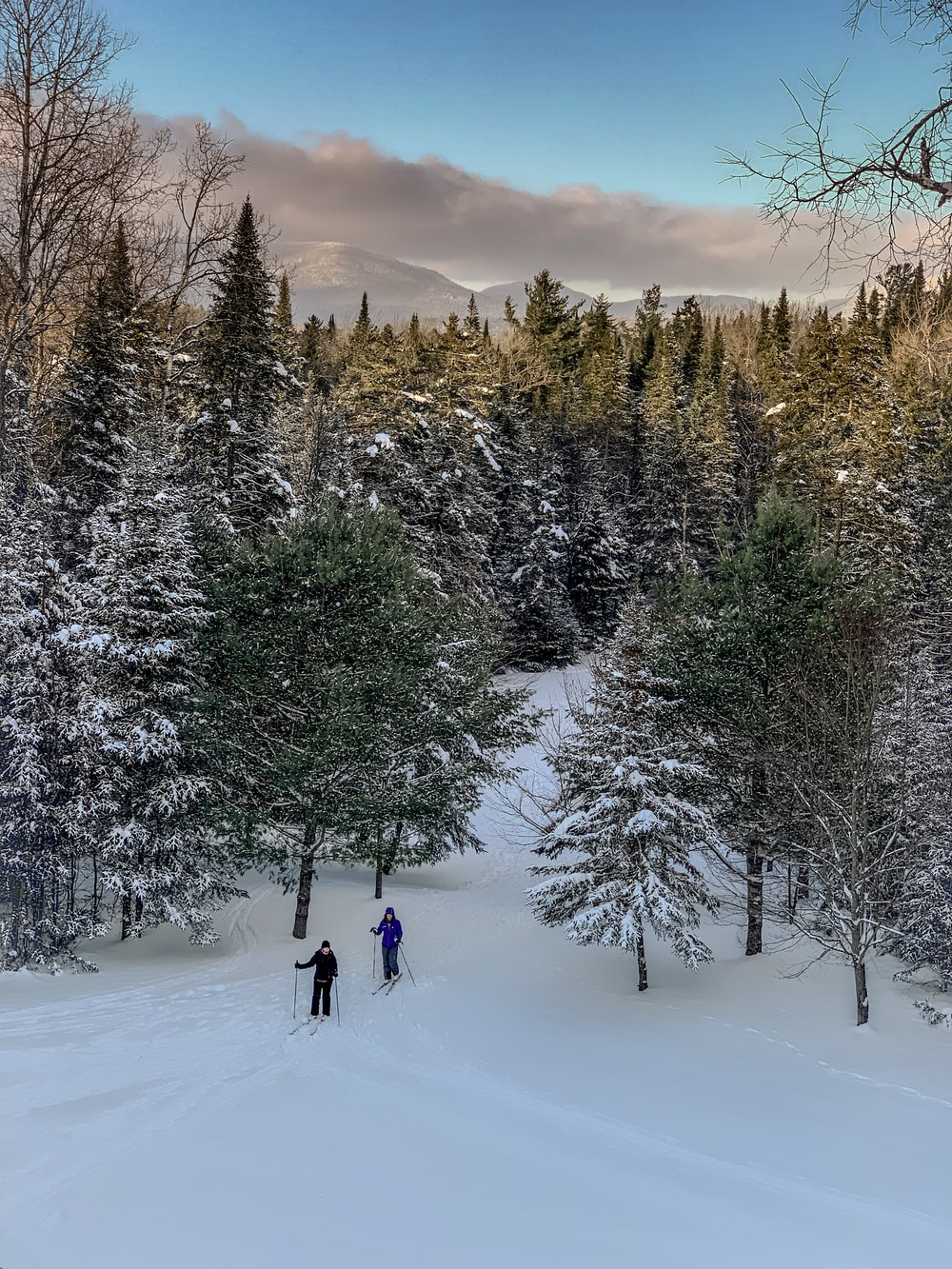 two people skiing during daytime
