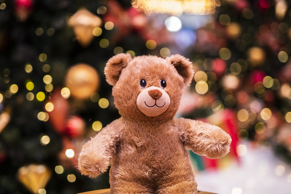 Best Teddy Bear Pictures [HD]