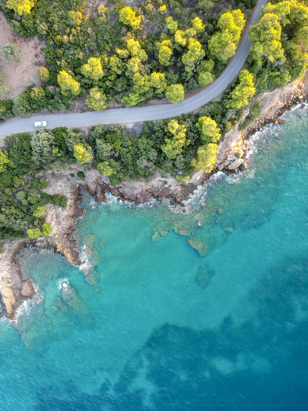bird's-eye view photography of road in forest