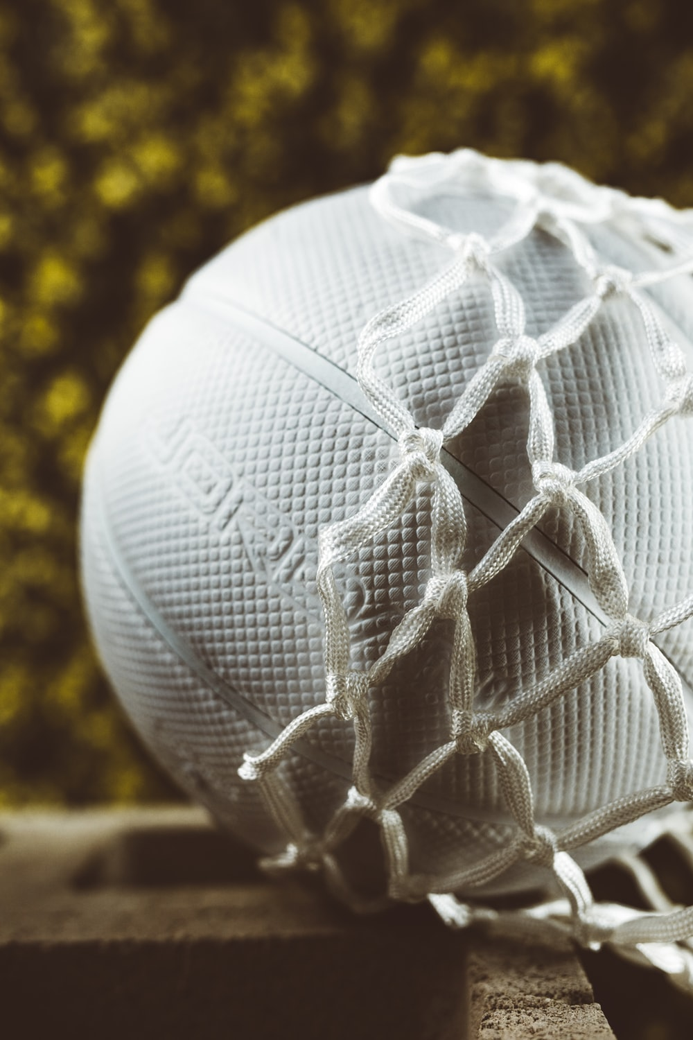 750 Volleyball Pictures Download Free Images Stock Photos On Unsplash