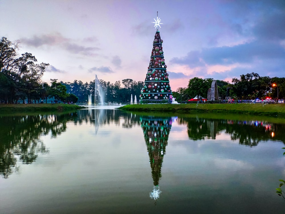 Christmas tree refection on body of water under cloudy sky during daytime