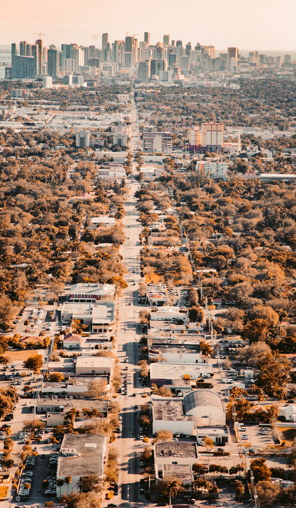 aerial photography of city landscape during daytime
