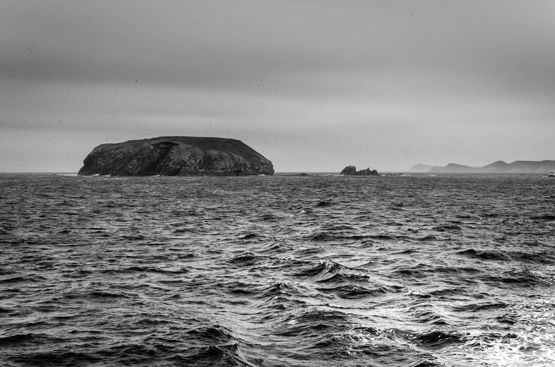 Off the coast of Newfoundland on a rainy day looking for whales.