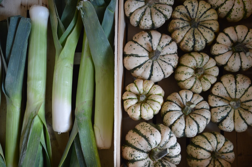 scallion and pumpkin lot collage