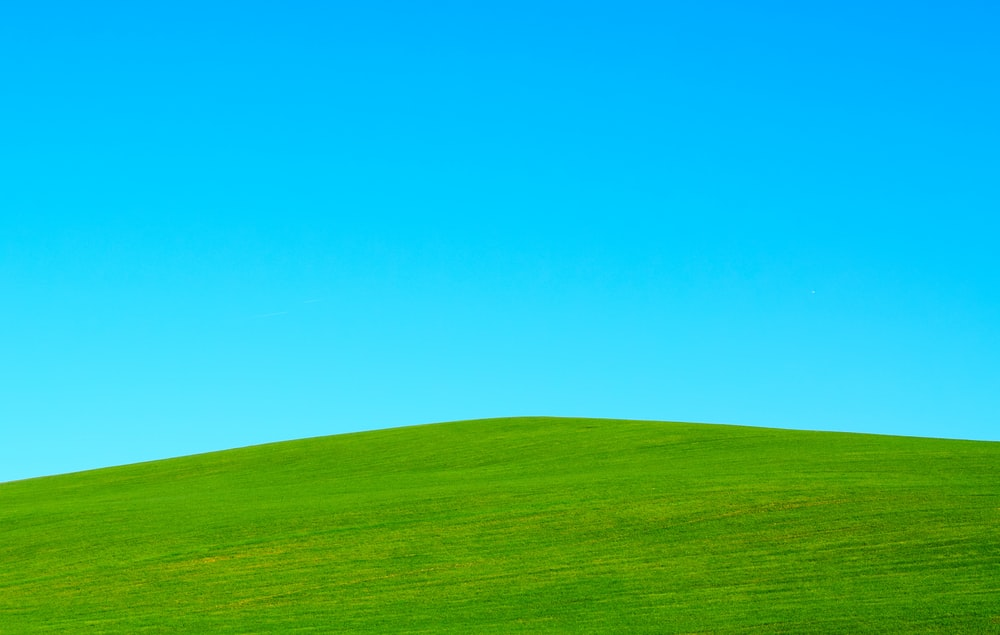 900 Green Background Images Download Hd Backgrounds On Unsplash