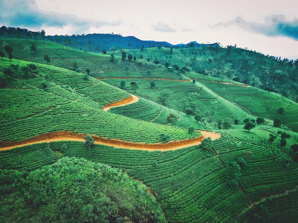 Fietsroutes Sri Lanka