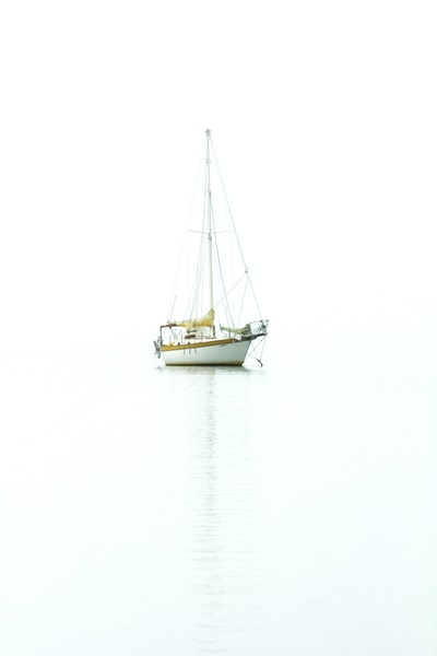 white and brown boat photography