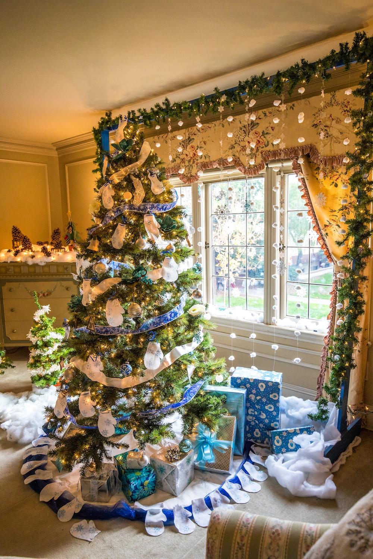green Christmas tree near glass window