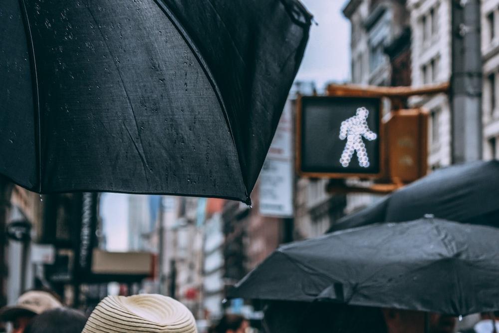 people using black umbrellas