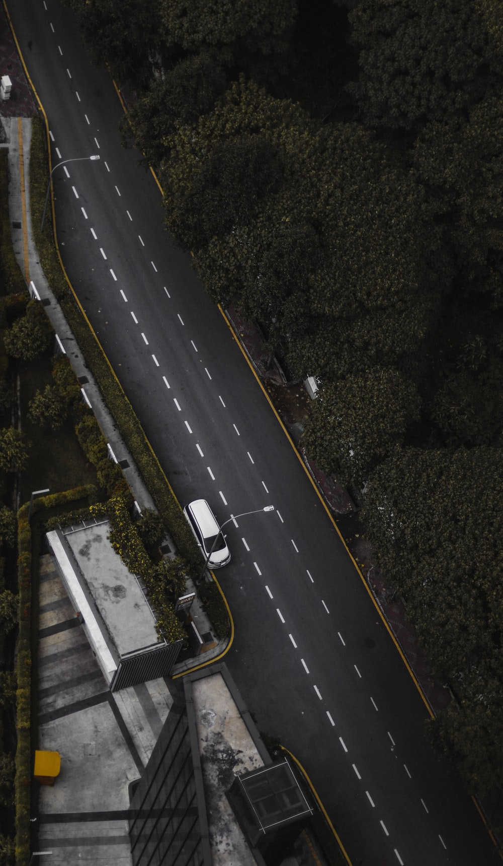 aerial photo of white car passing by trees during daytime