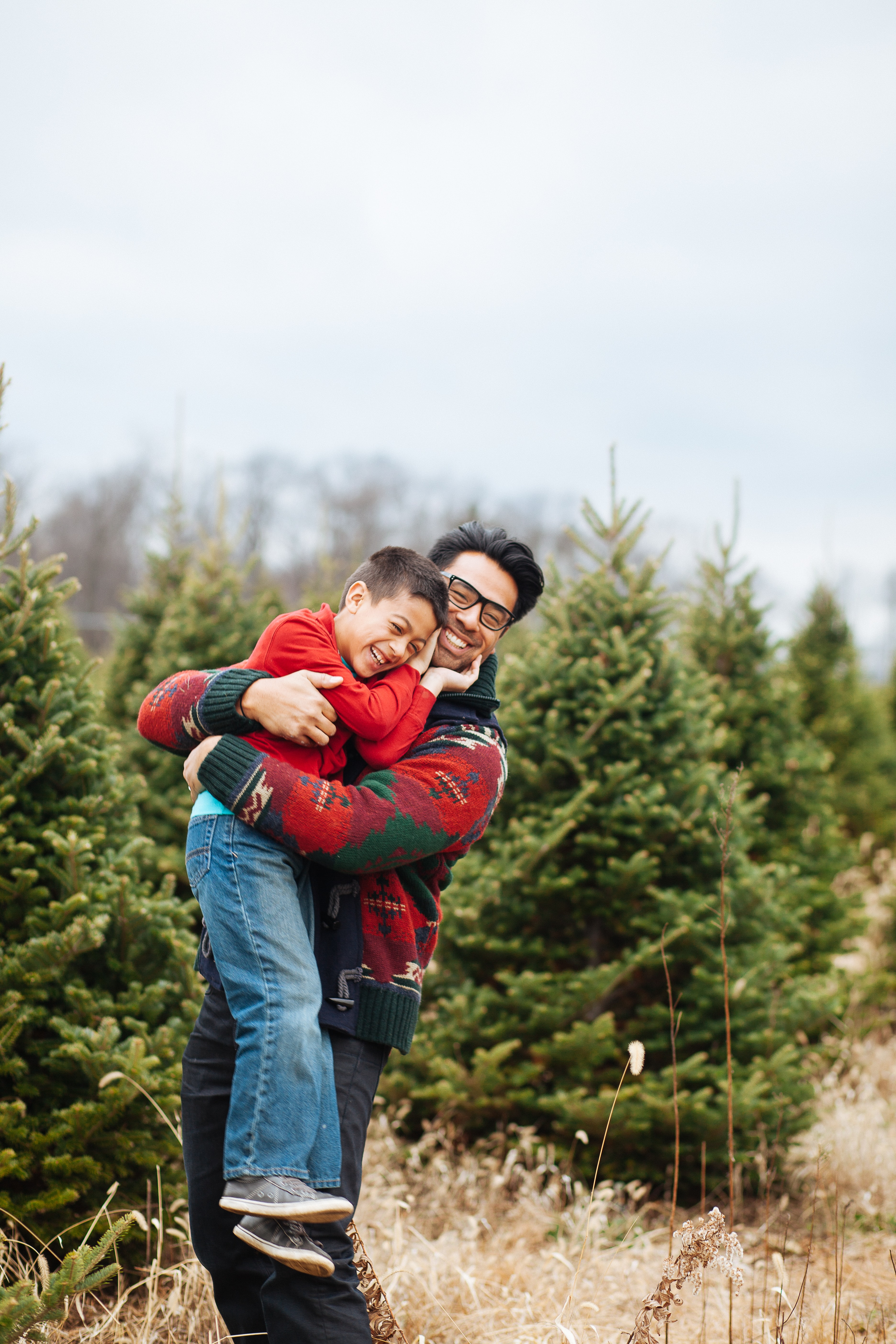 Christmas Tree Farm Pictures Download Free Images On Unsplash