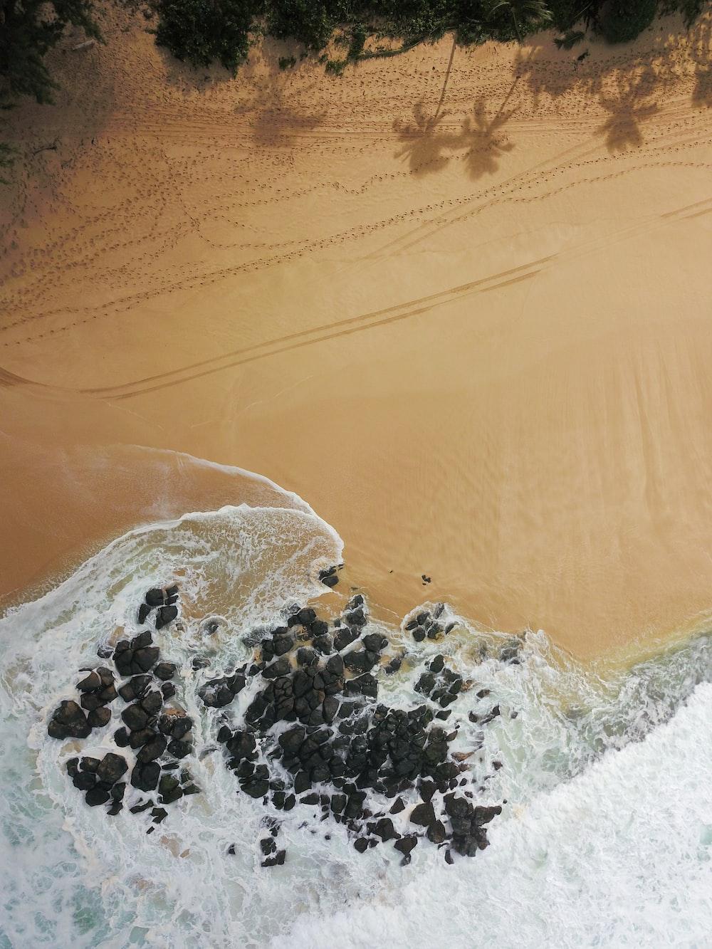 water hitting rocks on shore near trees during daytime