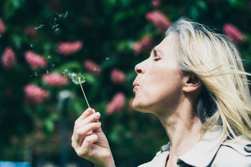 woman blowing dandelion during daytime