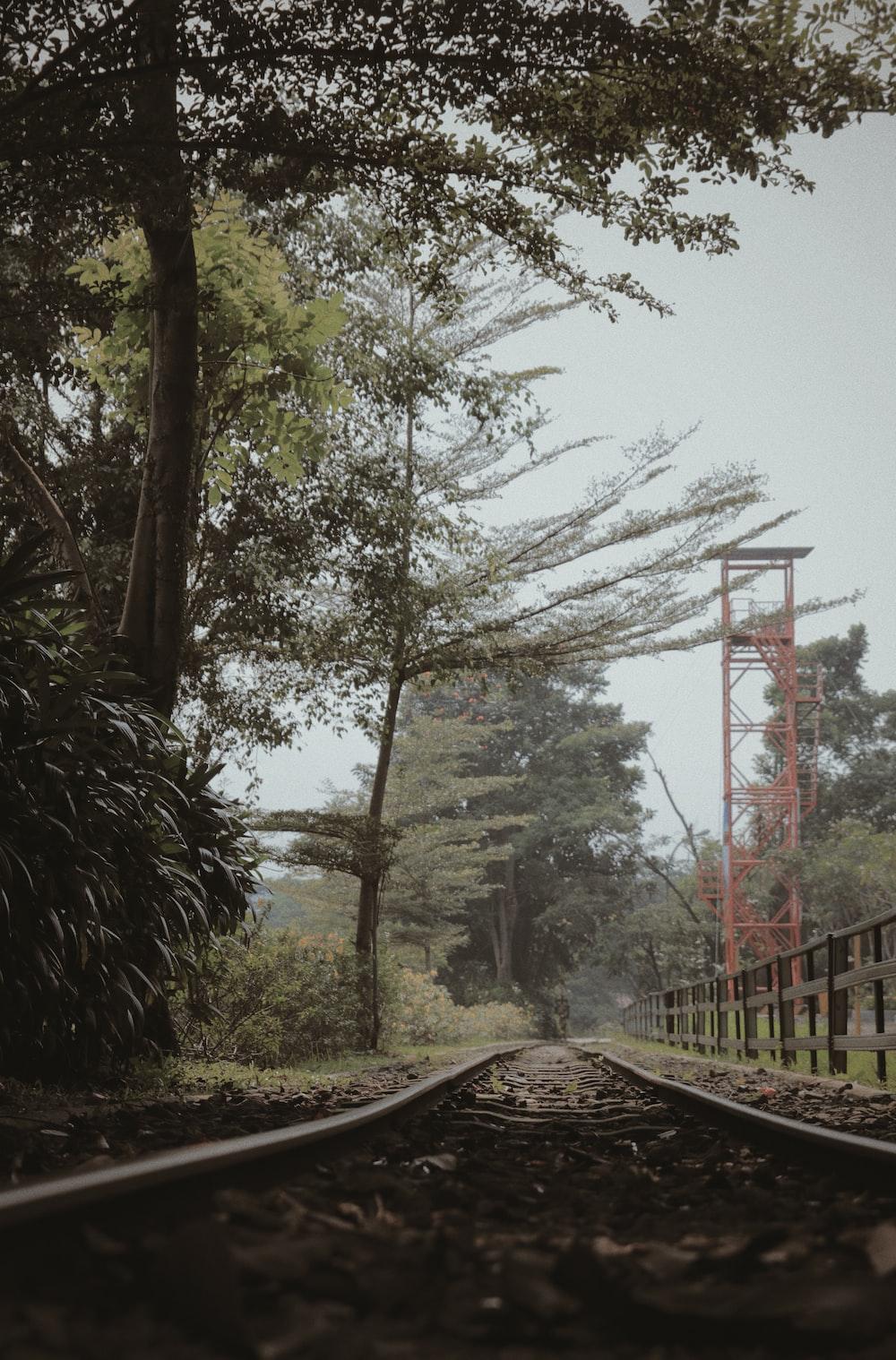 brown rail train