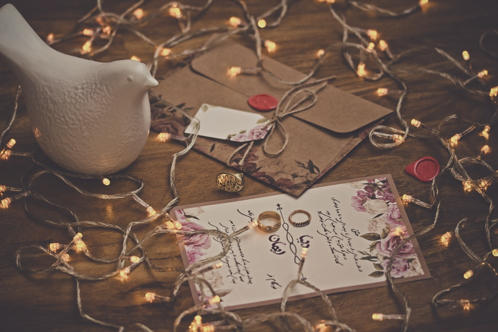 white dove figurine surrounded by string lights on table