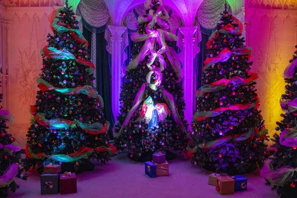 five assorted-color christmas trees with lights and gifts inside room