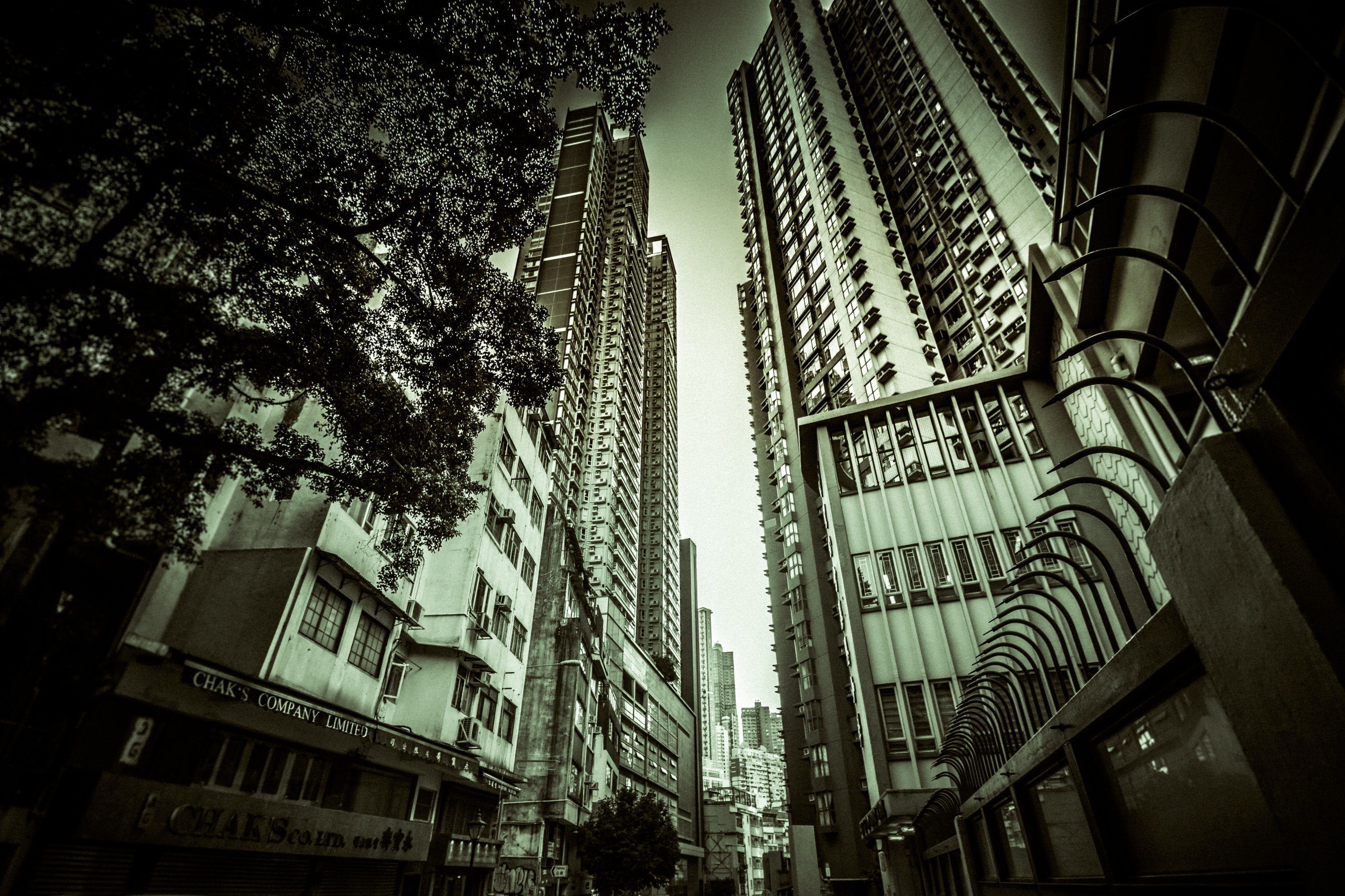 worm's eye view of buildings surrounded with trees