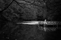 grayscale photo of person standing on dock near trees