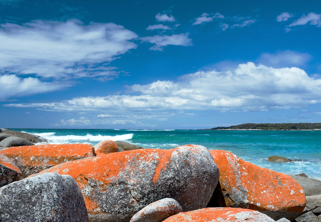 Granite boulders covered with orange lichen. Humbug point Reserve, looking towards St Helens point, Tasmania, Australia.