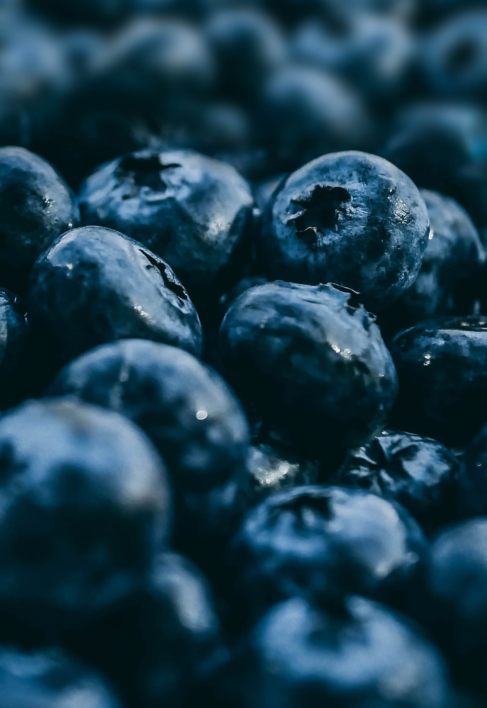 selective focus photography of blueberry