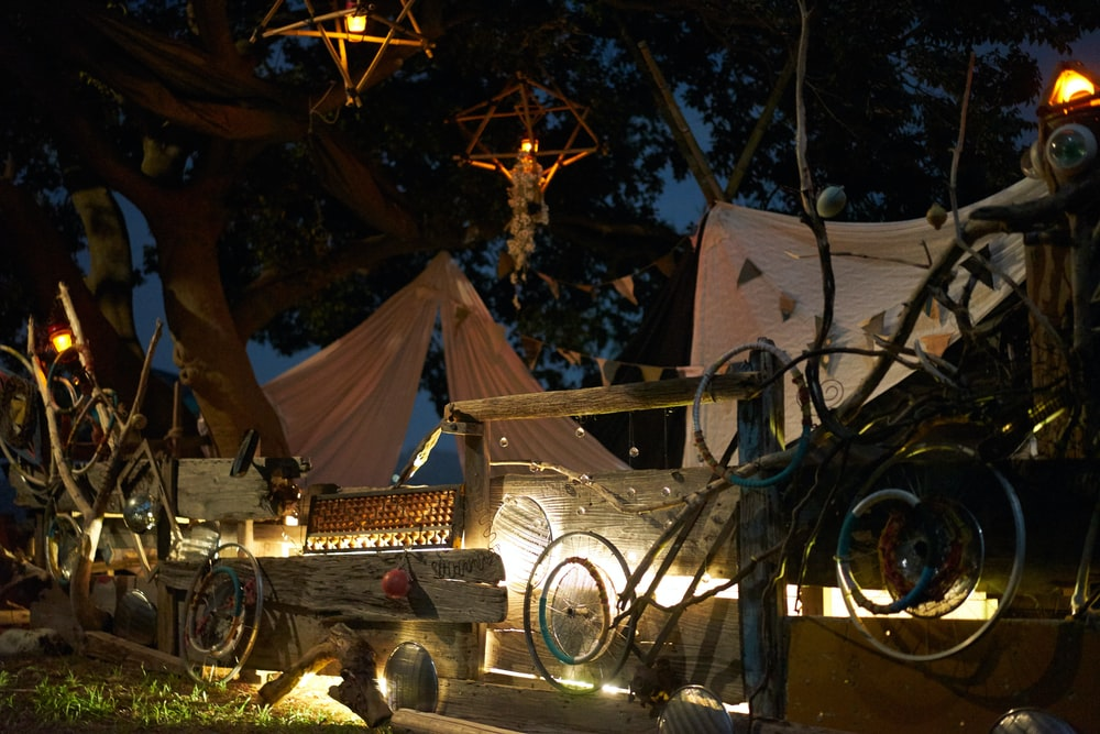 assorted items under tree with lights