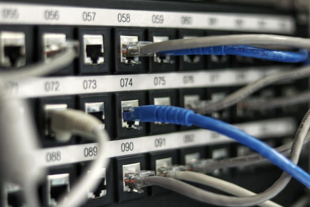 blue UTP cord
