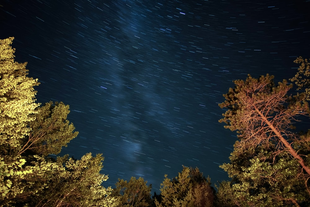 low angle photography of starry night