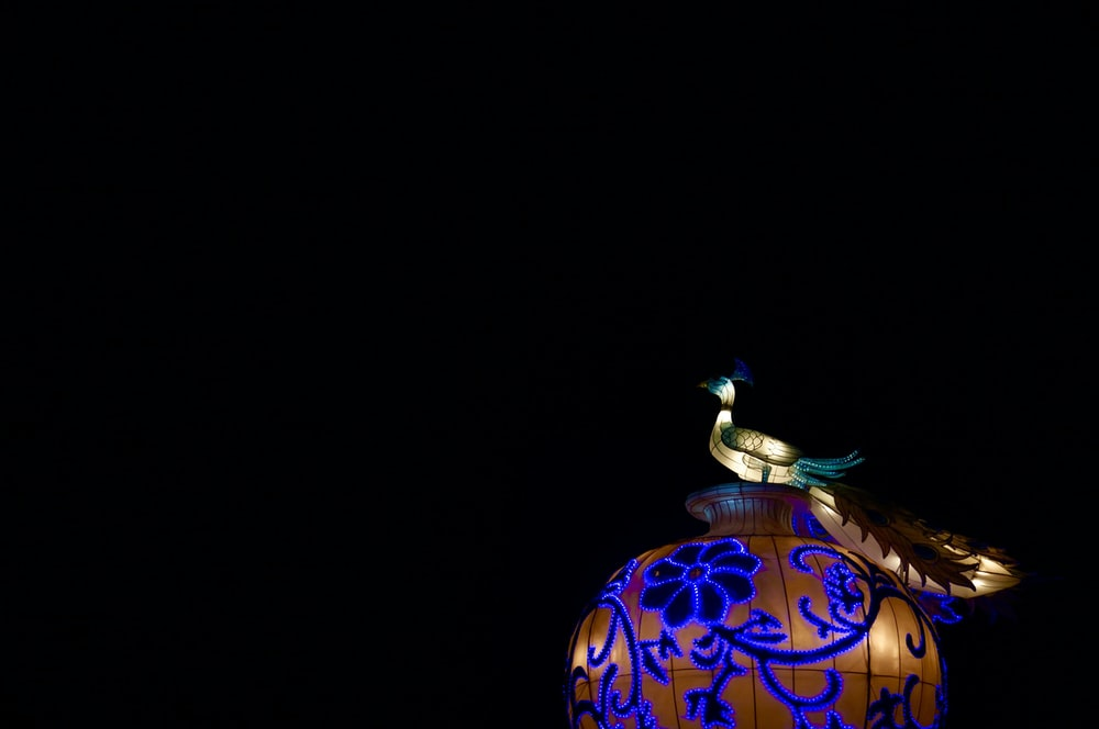 lighted bird-themed lamp