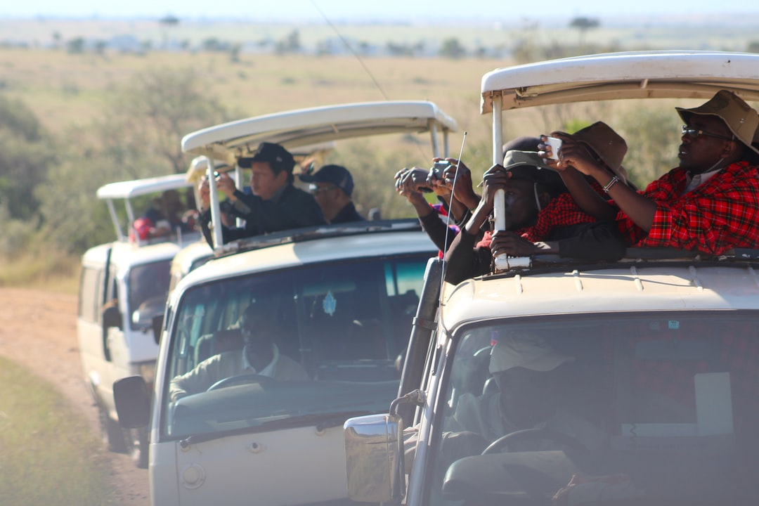 The Second Largest Migration on Safari - tourists
