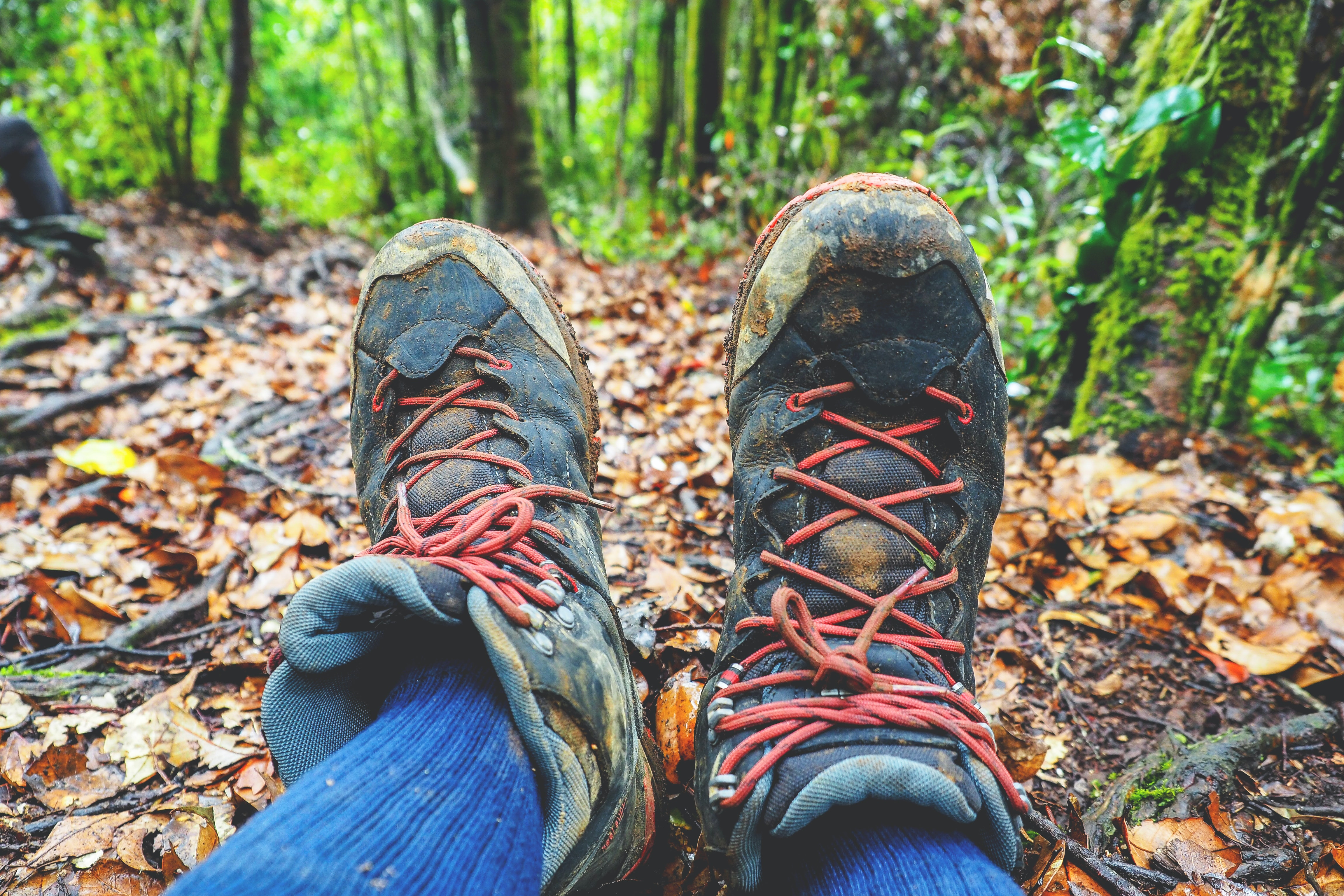 person taking photo of his shoes while in the forest