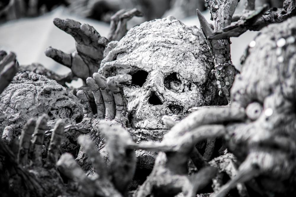 human skull decors
