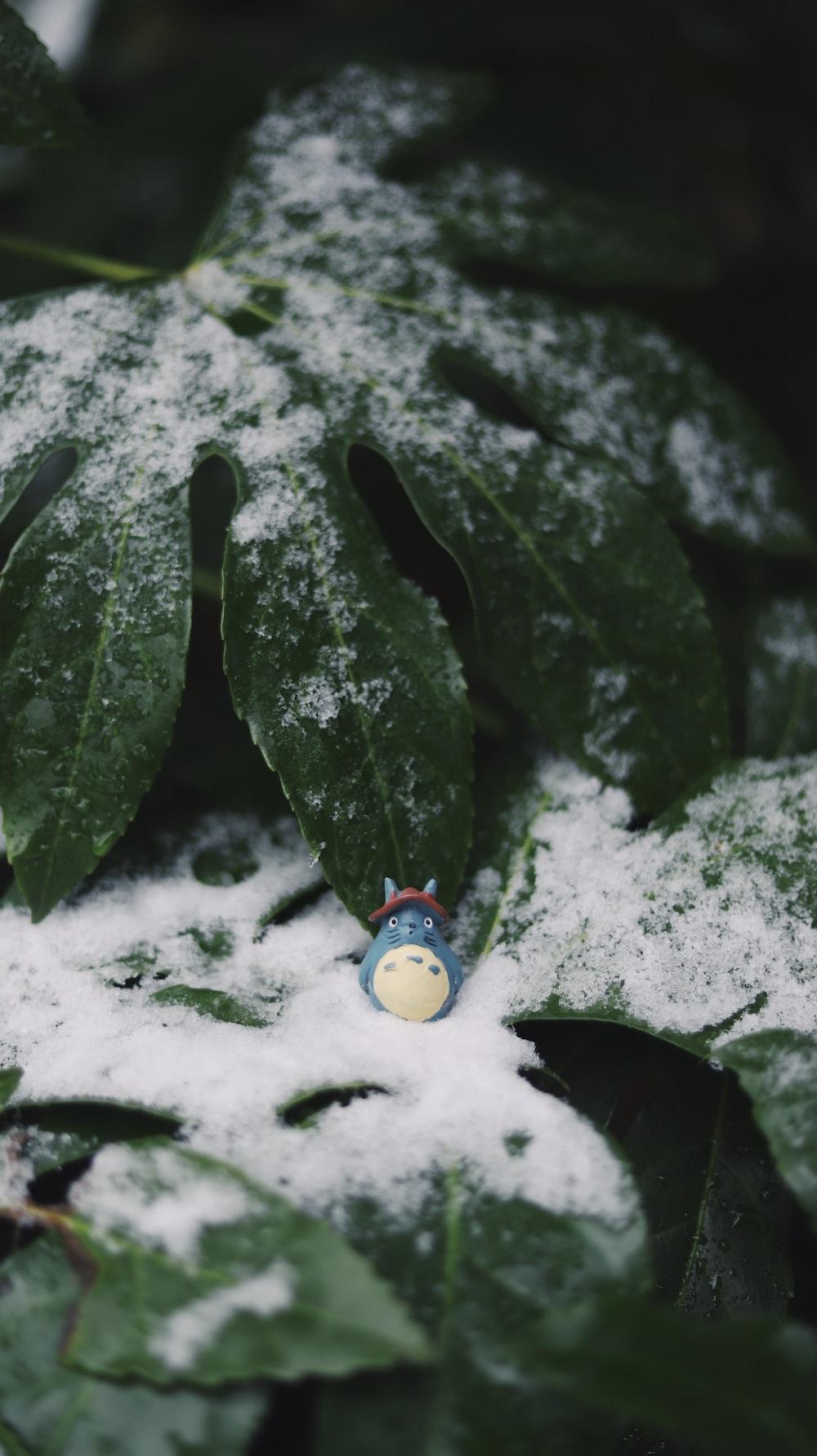 Totoro plastic toy on green leaf